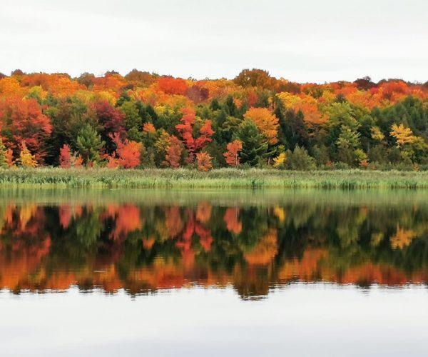 Marie-Christine Bisson-Lac St-Georges-Réflexion colorée sur le lac